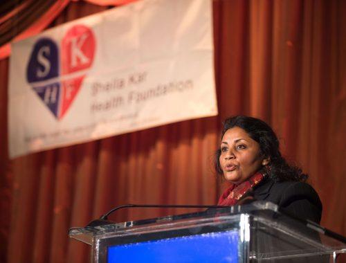 SKHF Seminar And Evening: 2013